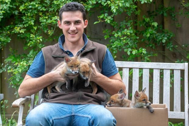Chris Rolfe, 24, mit den vier kleinen Fuchswaisen