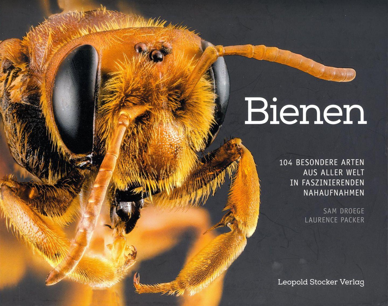 """Bienen  Von Sam Droege und Laurence Packer  Normalerweise spricht der Bienen-Experte vom """"Bien"""", dem Superorganismus aus zehntausenden Bienen. In diesem Bildband hingegen steht die einzelne Biene im Wortsinn im Focus. Die Insektenforscher Sam Droege und Laurence Packer haben die Vertreterinnen von 104 unterschiedlichen Bienenarten zum Porträt vor die Kamera gebeten. Eine erstaunliche Bildreihe, denn die meisten Bienenrassen haben äußerlich mit der europäischen Honigbiene kaum etwas gemein. So ist eine Art grün, heißtPrachtbiene, erinnertindes an an eine Schmeißfliege, andere wie die Fleckenbiene sind schwarz-weiß und pelzig. Die Vielfalt ist erstaunlich und mitunter sogar etwas gruselig."""