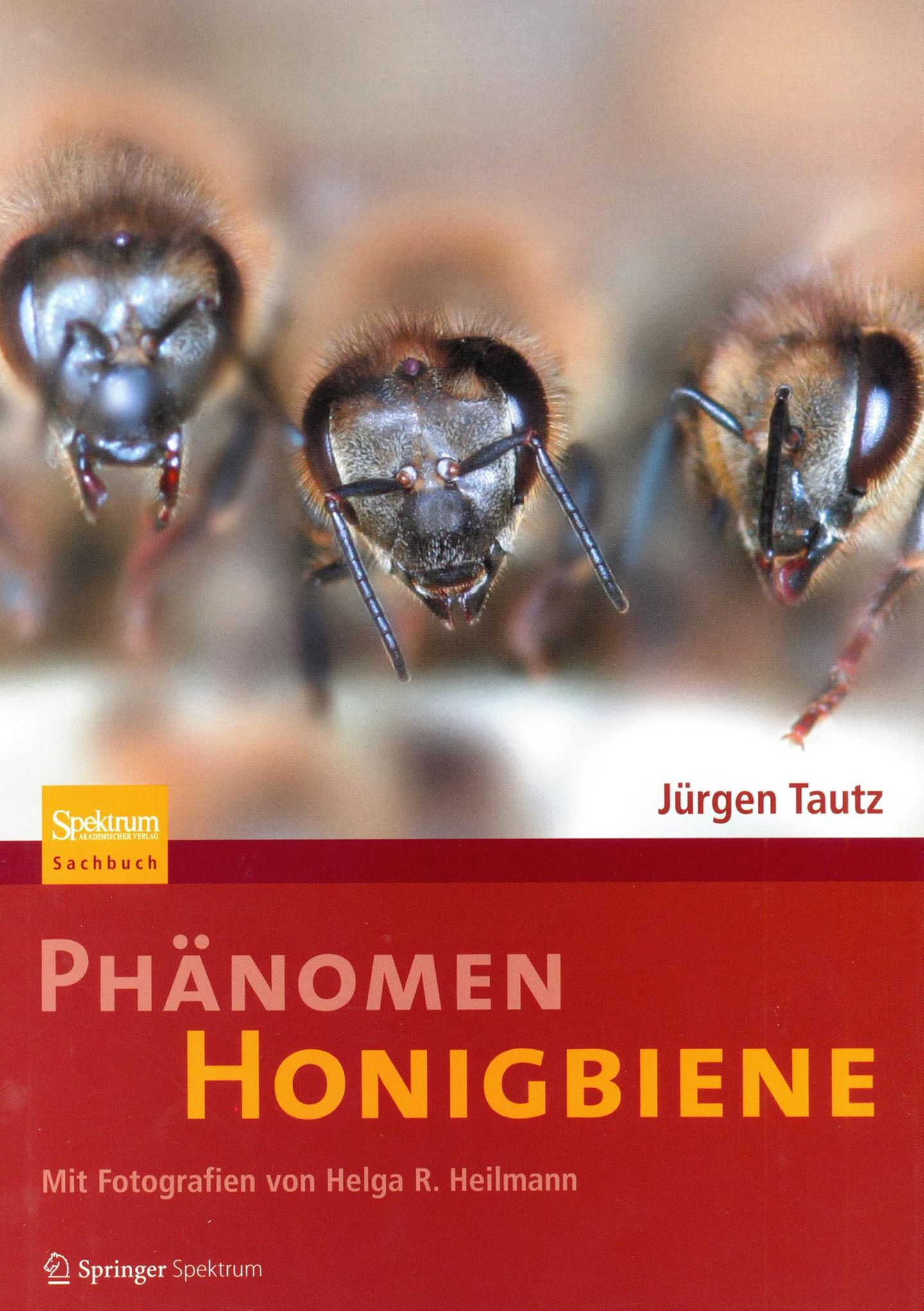 Phänomen Honigbiene  Von Jürgen Tautz      Jetzt wird es wissenschaftlich. Jürgen Tautz war Professor am Biozentrum, der Bayrischen Julius-Maximilians-Universität Würzburg. Von Haus aus ist er Verhaltensforscher und hatte mit Bienen nichts am Hut bis ihm ein Kollege ein Volk in den Garten stellte. Er würde schon sehen, die Bienen seien eine interessante Sache. Tautz packten die Tiere so sehr, dass Bienen sein Forschungsschwerpunkt und er über die Jahre ein international anerkannter Bienen-Experte wurde. Wem andere Bücher zu sehr an der Oberfläche kratzen, kann hier tiefer in die wissenschaftliche Welt der Bienen eintauchen. Hier geht es nicht um die Honiggewinnung, sondern um die einzelnen Körperfunktionen des Superorganismus Honigbiene.
