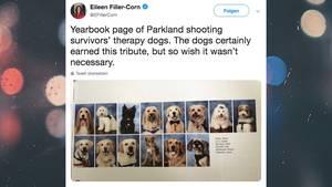 Parkland-Amoklauf: Therapie-Hunde bekommen eigene Fotos im Jahrbuch