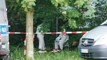 nachrichten deutschland - leiche park berlin