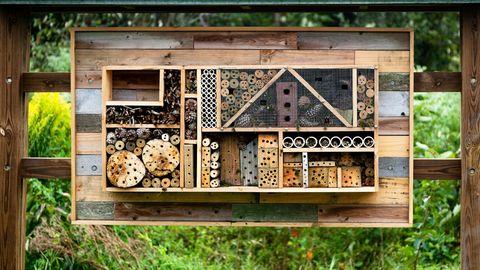 Ein Insektenhotel bietet Bienen und anderen Lebewesen neuen Lebensraum