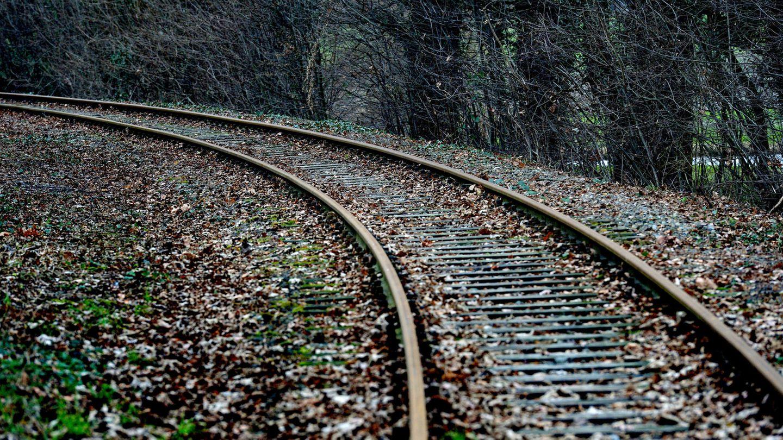 Zunehmend werden Bahnstrecken reaktiviert. Neue Vorschläge für weitere Verbindungen kommen vom Verband Deutscher Verkehrsunternehmen (VDV) und von der Allianz pro Schiene.