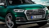 Der Audi SQ5 TDI tritt wuchtig auf