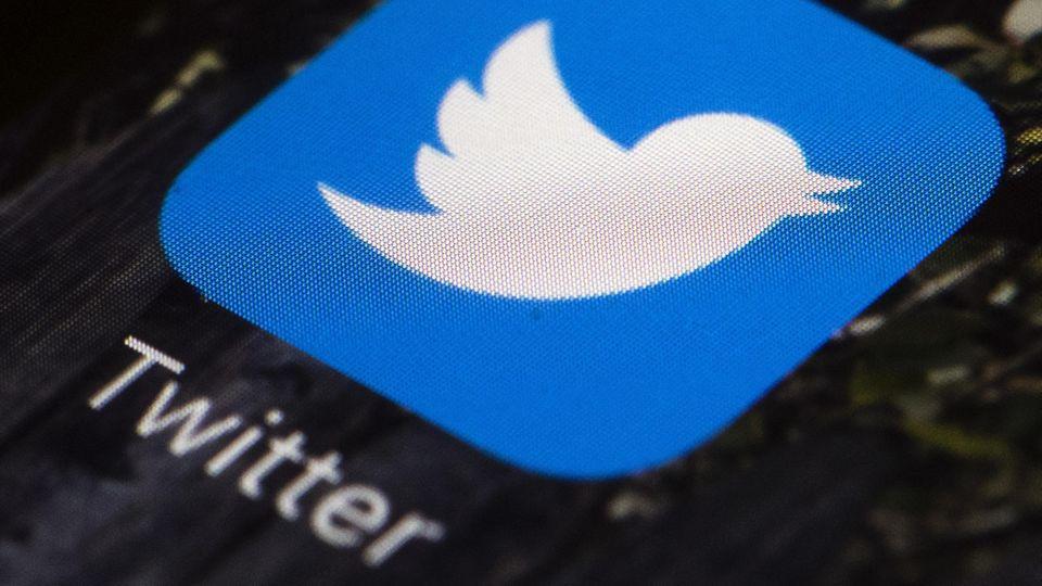 Twitter - AfD - Fake-Profile