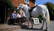 Tonbridge, England. Ein Schimmelreiter hat sein Pferd vor einem Pub angebunden, um in dem Lokal seine Stimme für die Europawahl abzugeben. Ausgerechnet die Briten haben heuteden europaweiten Urnengang begonnen,obwohl sie dieEuropäische Union Ende Oktober verlassen wollen.