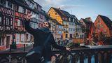 Nachhaltigkeit und Reisen: Von Köln ins Elsass