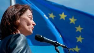 europawahl 2019 barley