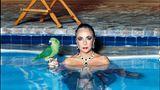 Elizabeth Taylor fotografiert von Helmut Newton