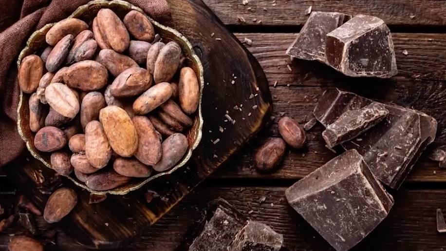 Gesund leben: Diese 6 Lebensmittel stärken das Herz