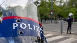 Die Polizei in Wien hat möglicherweise einen Prügel-Skandal aufzuklären (Symbolbild)