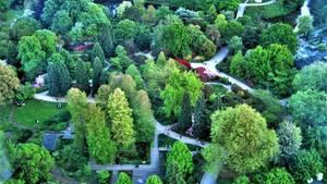 """""""Blick auf Planten un Blomen (von der Radisson Hotelbar). Planten un Blomen ist eine rund 50 Hektar große Parkanlage im Zentrum von Hamburg, nahe dem Fernsehturm.""""  Mehr Fotos vonASSYin derVIEW Fotocommunity    Aktionen und Informationen aus der VIEW Fotocommunity aufFacebookoderTwitter"""