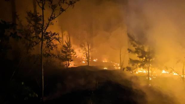 Der Waldbrand bei Jüterbogam Dienstag