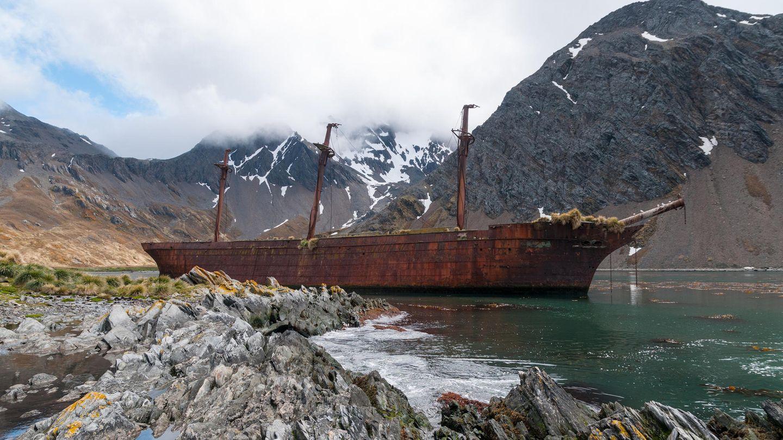 Das Ende eine grausamen Ära: Die Bayard ist eines von Hunderten Segelschiffen, die bis Mitte des 19.Jahrhunderts Jagd auf Wale und Robben gemacht haben. Das Wrack liegt seit 1911 im Ocean Harbour auf Südgeorgien.