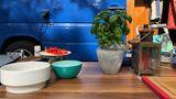 """Mein wichtigster Gegenstand beim Campen ist:  """"Diese Basilikum-Pflanze. Wir haben auf Reisen immer eine dabei - zum Kochen, aber auch als Deko für den Tisch."""" (Britt)"""