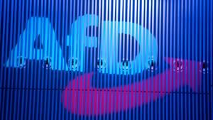 Das Logo der AfD (Symbolbild)