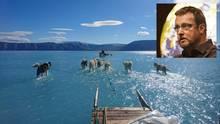 Grönland: Schlittenhunde laufen scheinbar über Wasser – ein ikonisches Bild zum Thema Klimawandel?