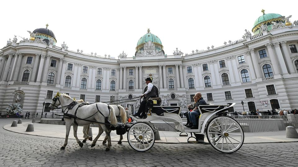 Fiaker fährt in der Wiener Innenstadt