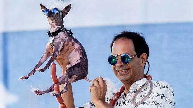 World's Ugliest Dog Contest: Dane Andrew hält seinen Hund Rascal bei dem World's Ugliest Dog Contest in der luft.