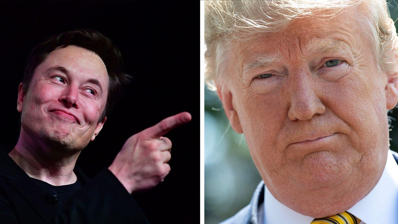Elon Musk und Donald Trump sind bei Deepfake-Erstellern besonders beliebt