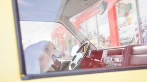 Ein Hund sitzt in einem Auto als Symbolfoto für Nachrichten aus Deutschland