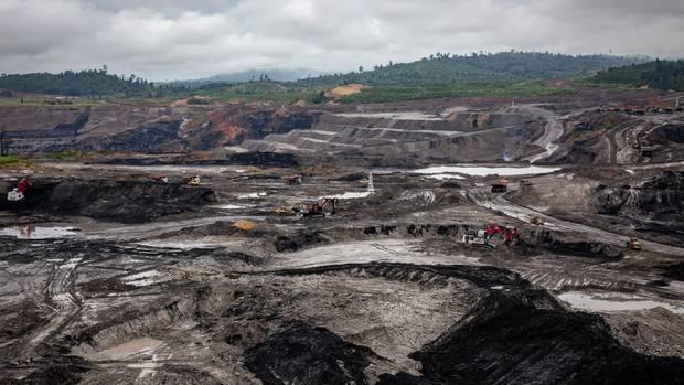 Der Chef der Naturschutzbehördebeklagt, dass ihm die Mittel fehlen, um sich etwa gegen die Ausweitung der Kohleminen zu wehren