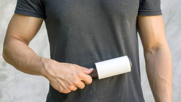Hundehaare lassen sich mit einer Fusselrolle leicht entfernen