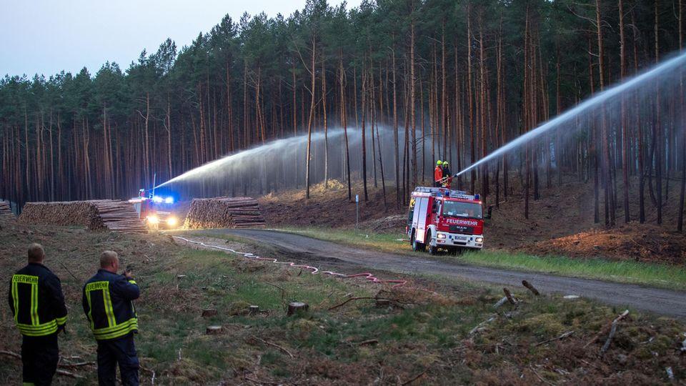 Mehr als 350 Feuerwehrleute bemühen sich, den Brand nahe desehemaligen Truppenübungsplatzes bei Lübtheen unter Kontrolle zu bringen