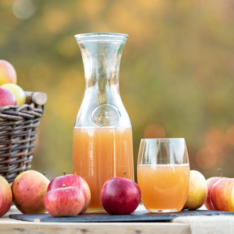 orangensaft selbst gepresst gesund zum abnehmen