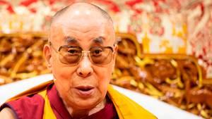 Der Dalai Lama Tenzin Gyatso