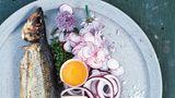 Røget Sild - traditionell geräucherter Hering  Zutaten: 2 ganze Heringe  Beilagen: 2 EL Schnittlauch, gehackt, 4 Radieschen, hauchdünn geschnitten (wenn möglich, mithilfe einer Mandoline),1 kleine Zwiebel, in dünne Ringe geschnitten, 25 g Butter, 2–4 dünne Scheiben Roggenbrot, 1 Eigelb vom sehr frischen Bio-Ei, Meersalz, 2–4 Schnittlauchblüten (optional)      Zubereitung:Zum Servieren je einen geräucherten Hering auf einen Teller legen und auch die Beilagen gleichmäßig verteilen. Sollten Schnittlauchblüten erhältlich sein, die Blütenblätter abzupfen und auf die Teller streuen. Die Brotscheiben leicht mit Butter bestreichen, die Fischhaut entfernen, das Fischfleisch in Stücke zupfen und auf das Brot geben. Mit den Zwiebelringen und den Radieschen belegen. Mit etwas Eigelb bestreichen und mit Meersalz und Schnittlauchblüten bestreuen.