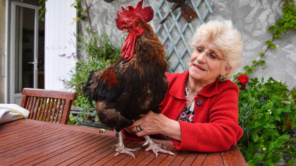 Hahn Maurice und seine Besitzerin Corine Fesseau