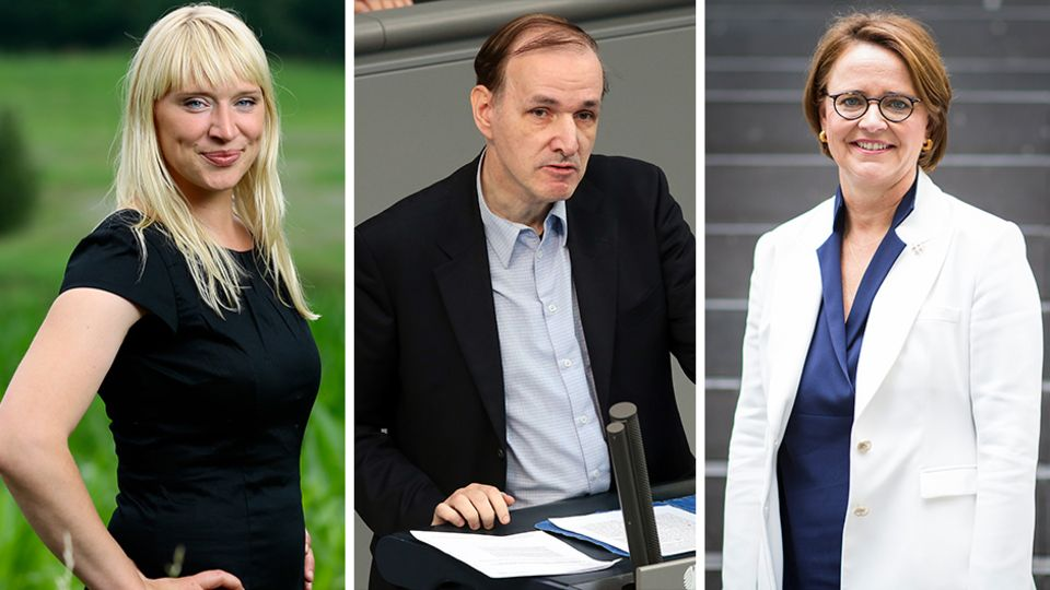 Luise Amtsberg (Grüne) (l.), Gottfried Curio (AfD) und Annette Widmann-Mauz (CDU) (r.) sind drei von sechs vom stern befragten Expertinnen und Experten für Migrationspolitik