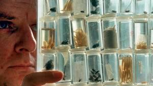 Der Forscher und seine Objekte
