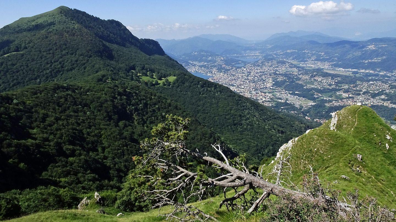 Tiefblick nach Lugano: Rechts im Bild schlängelt sich der Pfad kurz unterhalb der Grates durchs Gras