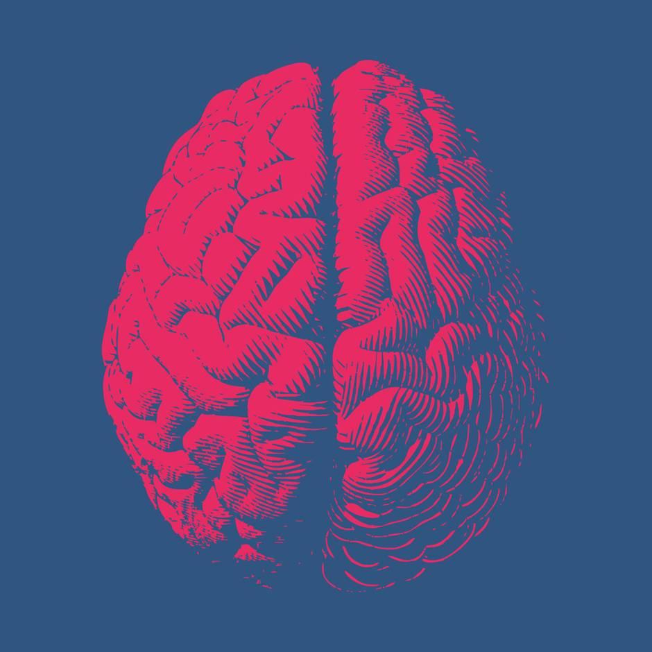 Neurobiologie: Schaden Smartphones unserem Gedächtnis? Das sagt ein Hirnforscher