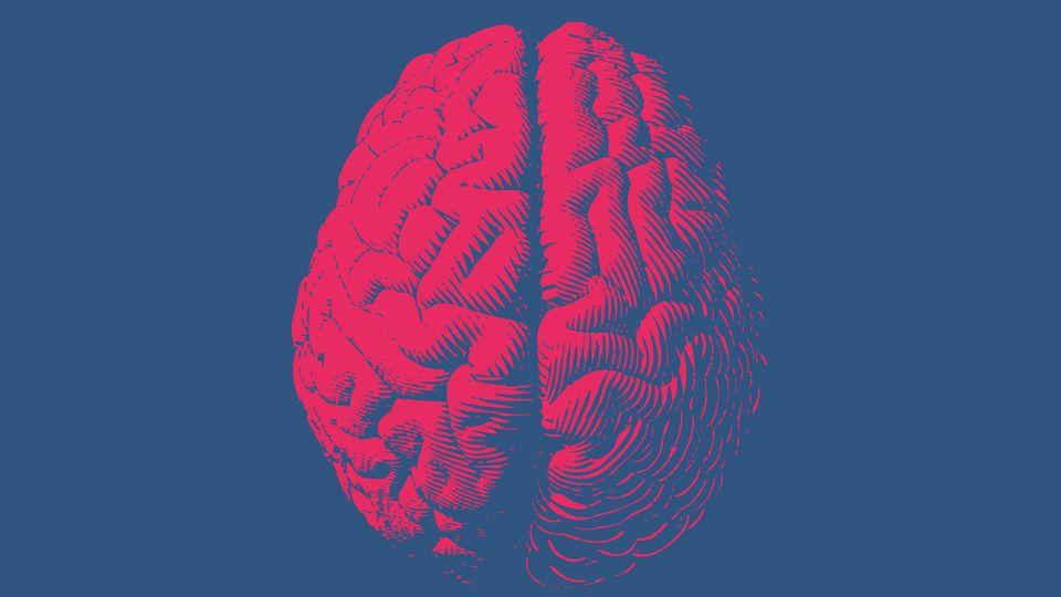 """Hirnforscher über digitale Medien: """"Wir tun unserem Gehirn keinen Gefallen"""""""