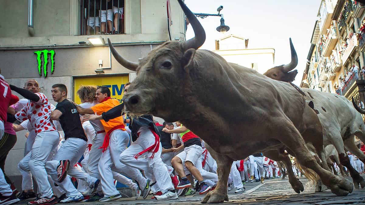 Stierhatz und Proteste: Pamplona: Wo Männer täglich auf die Hörner genommen werden