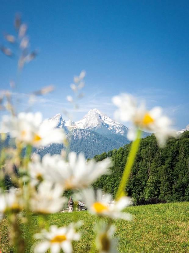 Der 2713 Meter hohe Berg thront über dem Nationalpark Berchtesgaden. Am Fuße des Watzmanns findet man eine einzigartige Flora