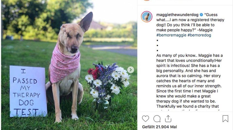 Instagram-Star Maggie