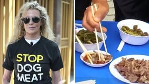 Kim Basinger protestiert gegen Hundefleischkonsum