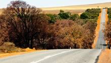 Vier Kinder und Jugendliche sind mit einem Auto rund 1000 Kilometer durch Australien gefahren (Symbolbild)
