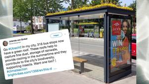 Nachhaltigkeit: Utrecht hat jetzt Bushaltestellen für Bienen