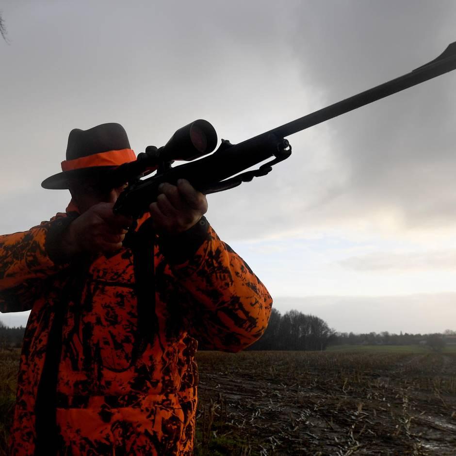 Nachrichten aus Deutschland: Jäger stützt sich zum Zielen auf Auto und schießt durchs Dach seinen Kameraden an