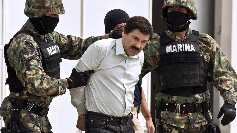 El Chapo IV