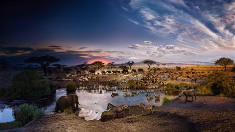 Serengeti National Park, Tansania