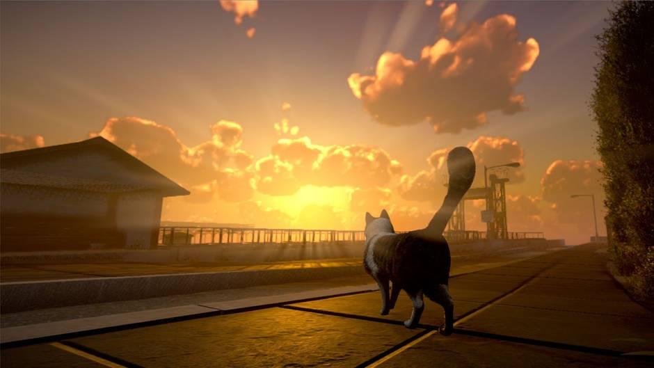 """Wo sind die menschlichen Gefährten? Diese Frage muss der Spielerin """"Peace Island"""" lösen."""