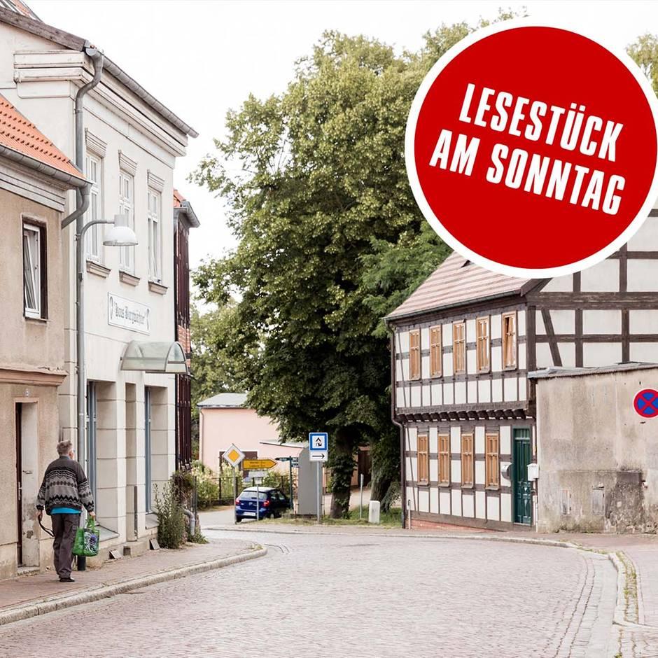 Penzlin in Mecklenburg-Vorpommern: Wo CDU und AfD zusammenarbeiten: Der Tabubruch in der Provinz