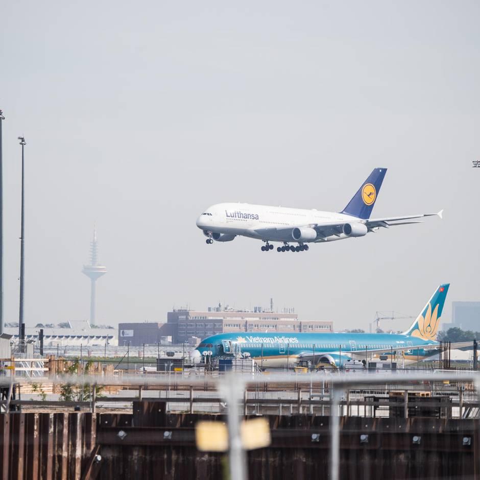 News von heute: Lufthansa setzte Flüge nach Kairo aus