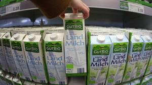 Milch-Packungen im Supermarkt